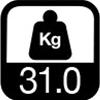 31 kg